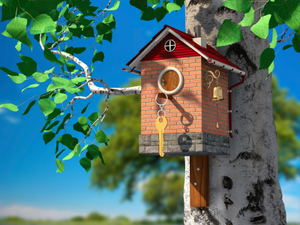 Bird house example for cost accounting basics